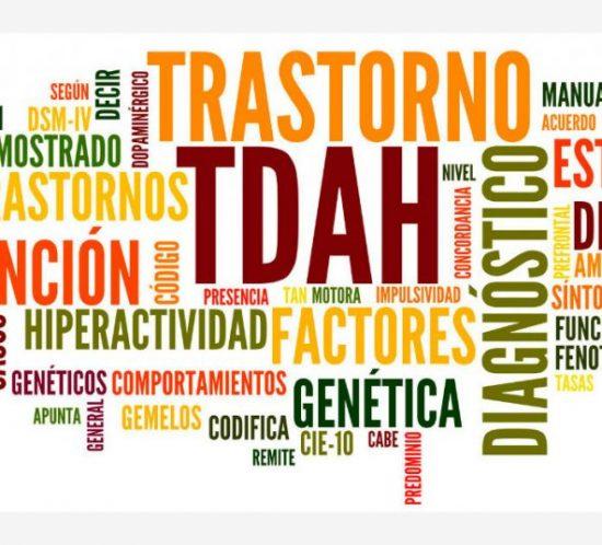 TDAH2-1024x536